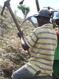 Haitian farmers prepare the land for planting.
